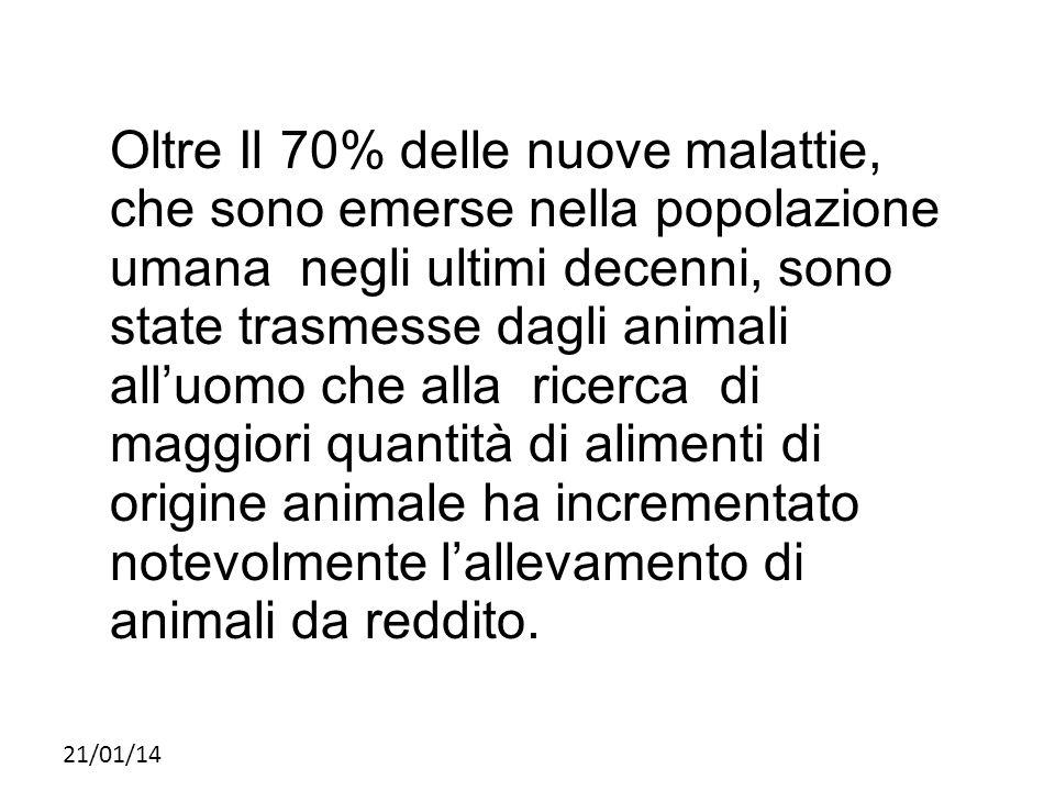21/01/14 Oltre Il 70% delle nuove malattie, che sono emerse nella popolazione umana negli ultimi decenni, sono state trasmesse dagli animali all'uomo