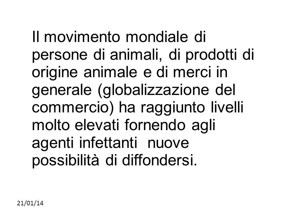 21/01/14 Il movimento mondiale di persone di animali, di prodotti di origine animale e di merci in generale (globalizzazione del commercio) ha raggiun