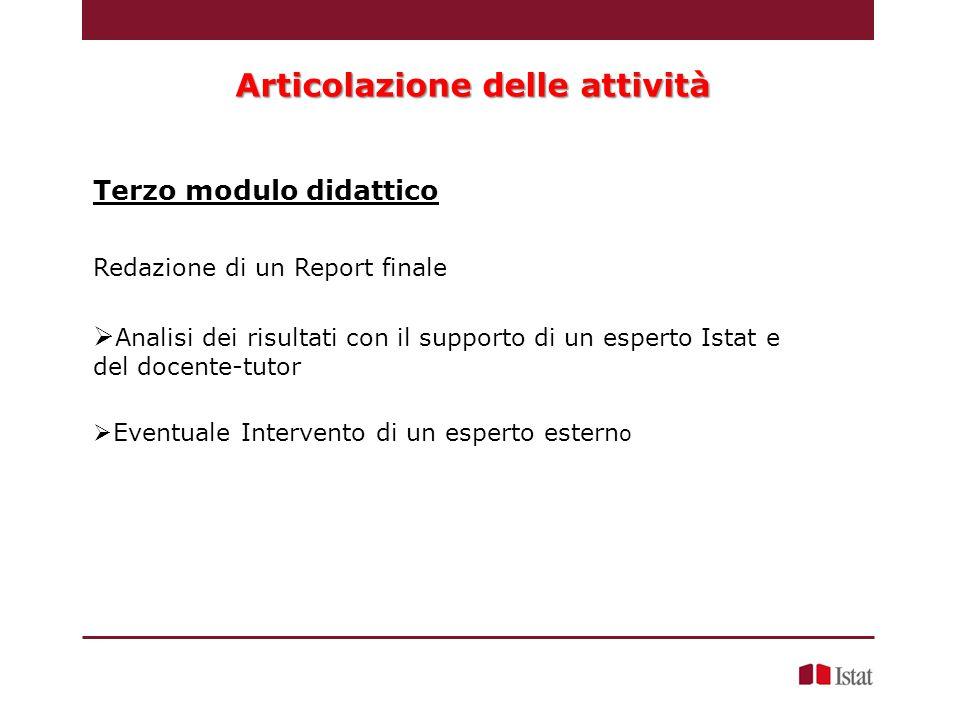 Redazione di un Report finale  Analisi dei risultati con il supporto di un esperto Istat e del docente-tutor  Eventuale Intervento di un esperto estern o Terzo modulo didattico Articolazione delle attività