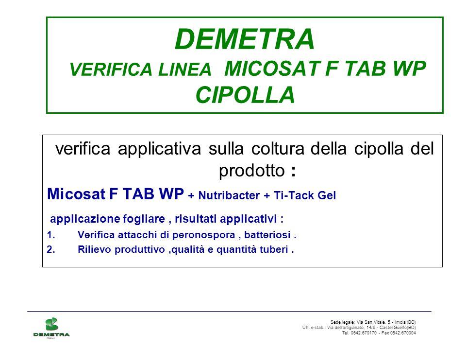 DEMETRA VERIFICA LINEA MICOSAT F TAB WP CIPOLLA verifica applicativa sulla coltura della cipolla del prodotto : Micosat F TAB WP + Nutribacter + Ti-Ta
