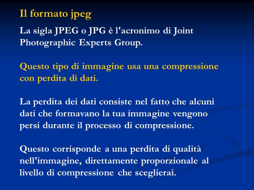 Il formato jpeg La sigla JPEG o JPG è l'acronimo di Joint Photographic Experts Group. Questo tipo di immagine usa una compressione con perdita di dati