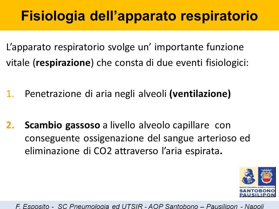 L'apparato respiratorio svolge un' importante funzione vitale (respirazione) che consta di due eventi fisiologici: 1.Penetrazione di aria negli alveol