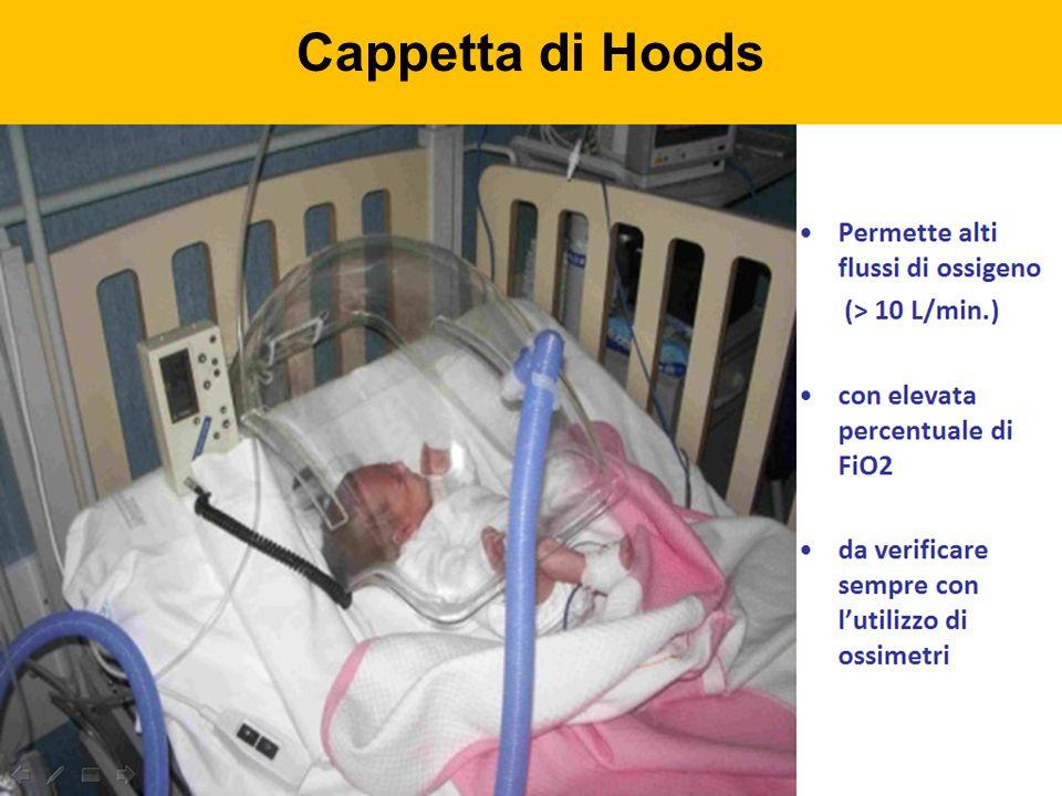 Cappetta di Hoods