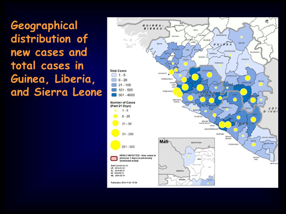 Geographical distribution of new cases and total cases in Guinea, Liberia, and Sierra Leone