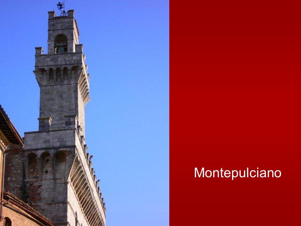 Benedetto XVI ha dedicato l'Udienza Generale di mercoledì 23 febbraio 2011 nell'aula Paolo VI a San Roberto Bellarmino 1542-1621