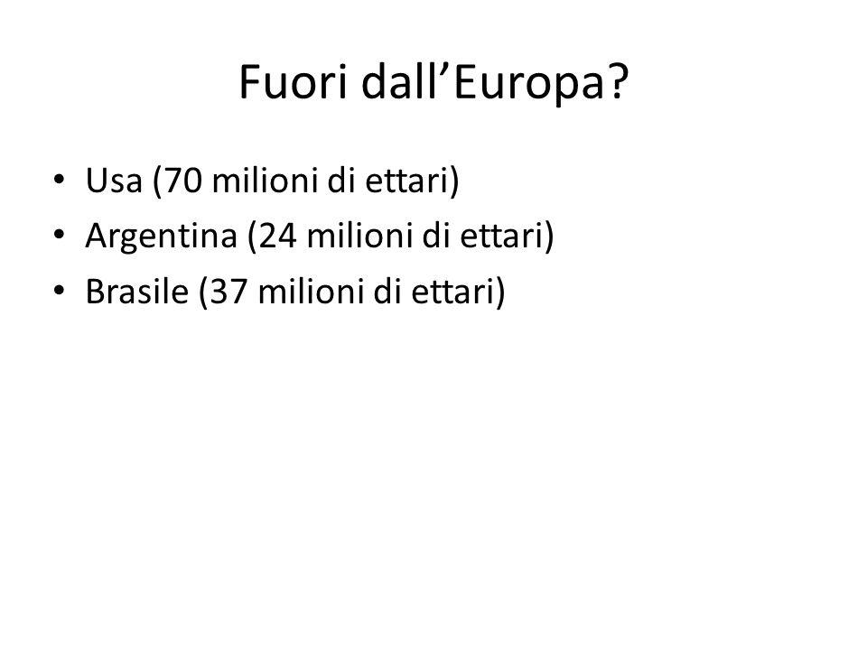Fuori dall'Europa? Usa (70 milioni di ettari) Argentina (24 milioni di ettari) Brasile (37 milioni di ettari)