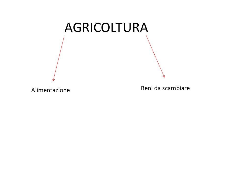 AGRICOLTURA Alimentazione Beni da scambiare