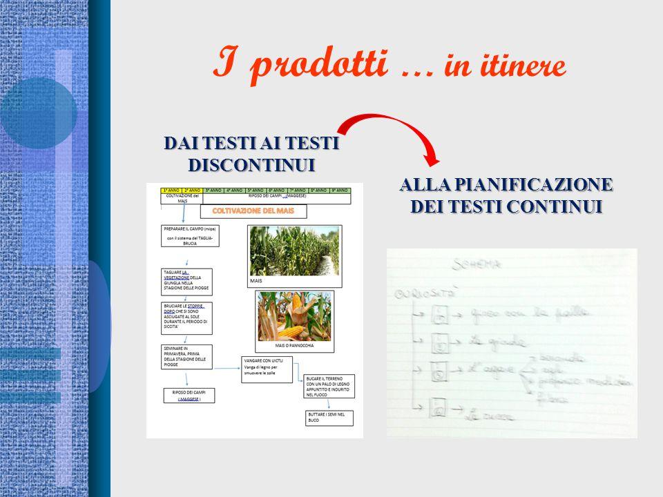 I prodotti … in itinere DAI TESTI AI TESTI DISCONTINUI ALLA PIANIFICAZIONE DEI TESTI CONTINUI