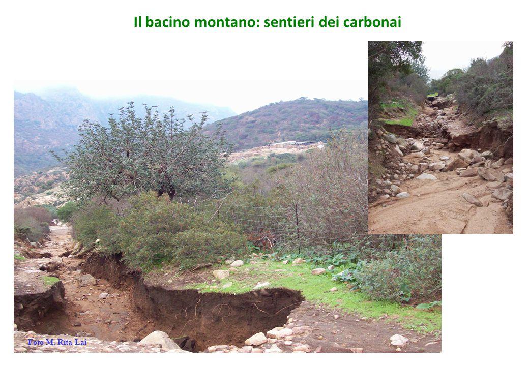 Il bacino montano: sentieri dei carbonai Foto M. Rita Lai