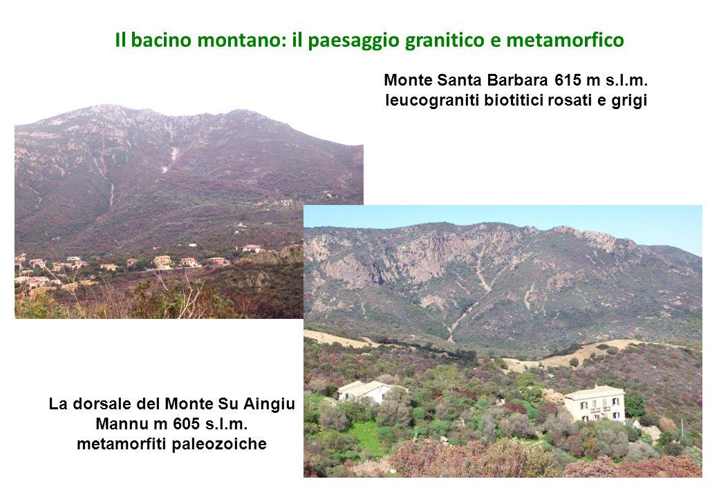 Il bacino montano: il paesaggio granitico e metamorfico Monte Santa Barbara 615 m s.l.m. leucograniti biotitici rosati e grigi La dorsale del Monte Su