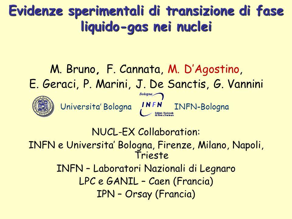 M. Bruno, F. Cannata, M. D'Agostino, E. Geraci, P.