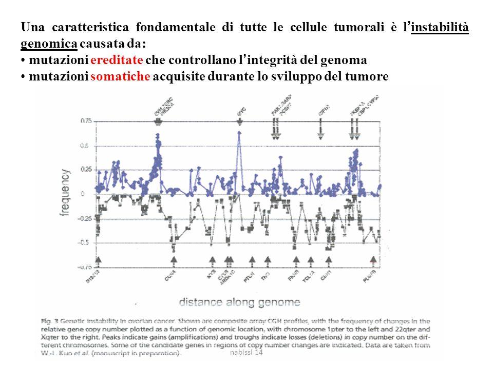 Una caratteristica fondamentale di tutte le cellule tumorali è l'instabilità genomica causata da: mutazioni ereditate che controllano l'integrità del