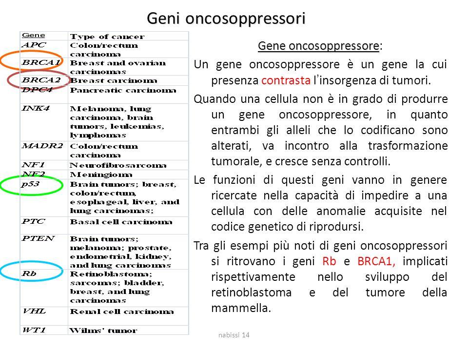Geni oncosoppressori Gene oncosoppressore Gene oncosoppressore: Un gene oncosoppressore è un gene la cui presenza contrasta l'insorgenza di tumori. Qu