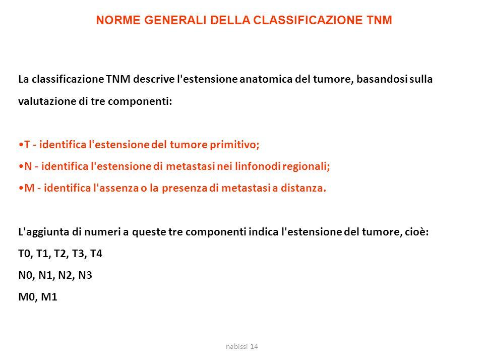 La classificazione TNM descrive l'estensione anatomica del tumore, basandosi sulla valutazione di tre componenti: T - identifica l'estensione del tumo