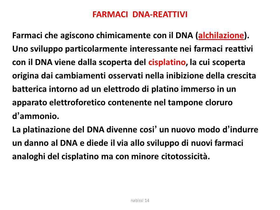 FARMACI DNA-REATTIVI Farmaci che agiscono chimicamente con il DNA (alchilazione). Uno sviluppo particolarmente interessante nei farmaci reattivi con i