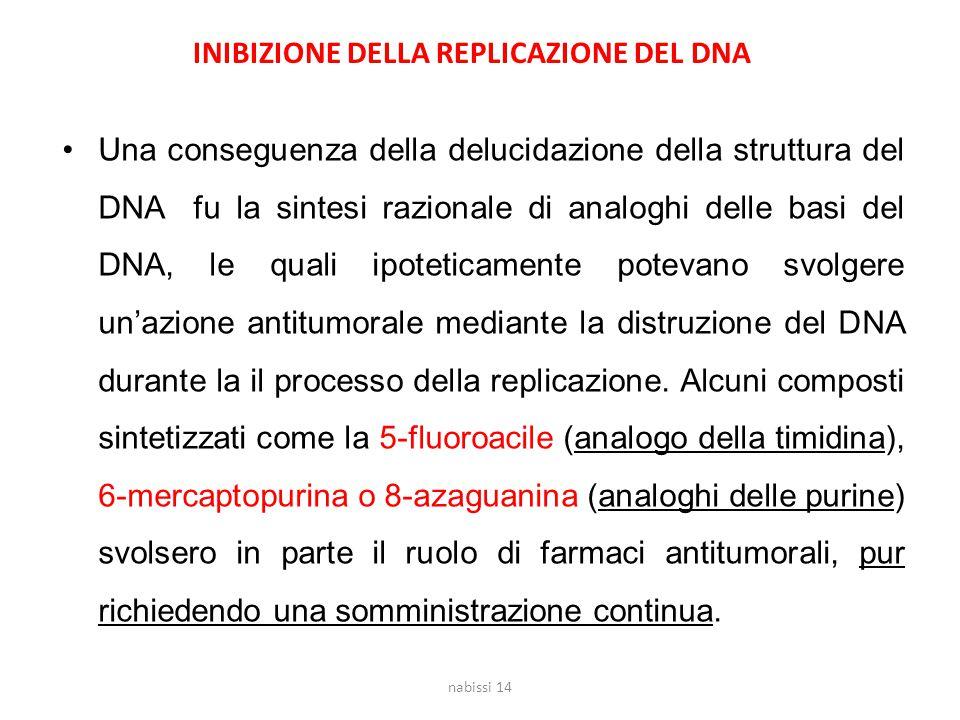INIBIZIONE DELLA REPLICAZIONE DEL DNA Una conseguenza della delucidazione della struttura del DNA fu la sintesi razionale di analoghi delle basi del D