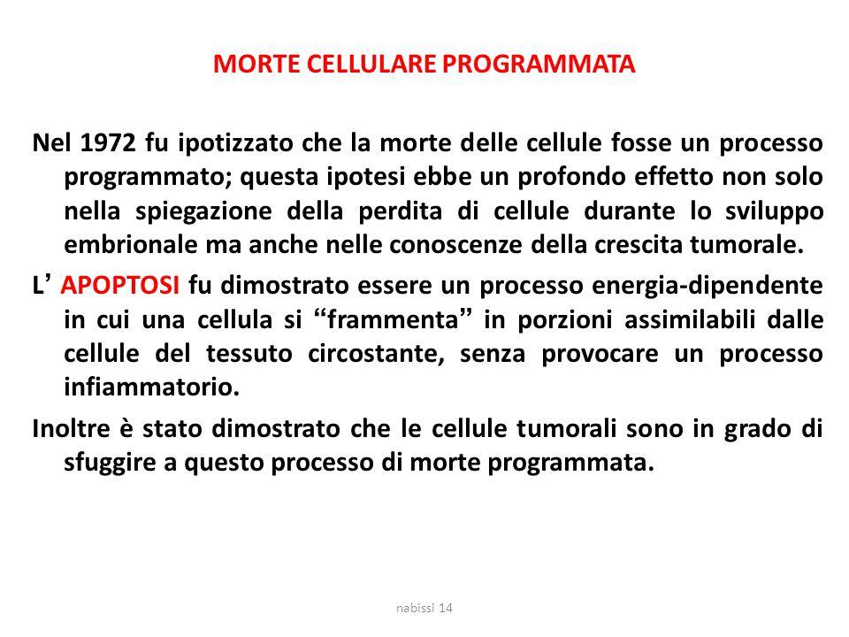 MORTE CELLULARE PROGRAMMATA Nel 1972 fu ipotizzato che la morte delle cellule fosse un processo programmato; questa ipotesi ebbe un profondo effetto n