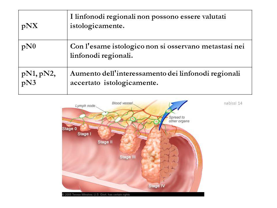 pNX I linfonodi regionali non possono essere valutati istologicamente. pN0Con l'esame istologico non si osservano metastasi nei linfonodi regionali. p