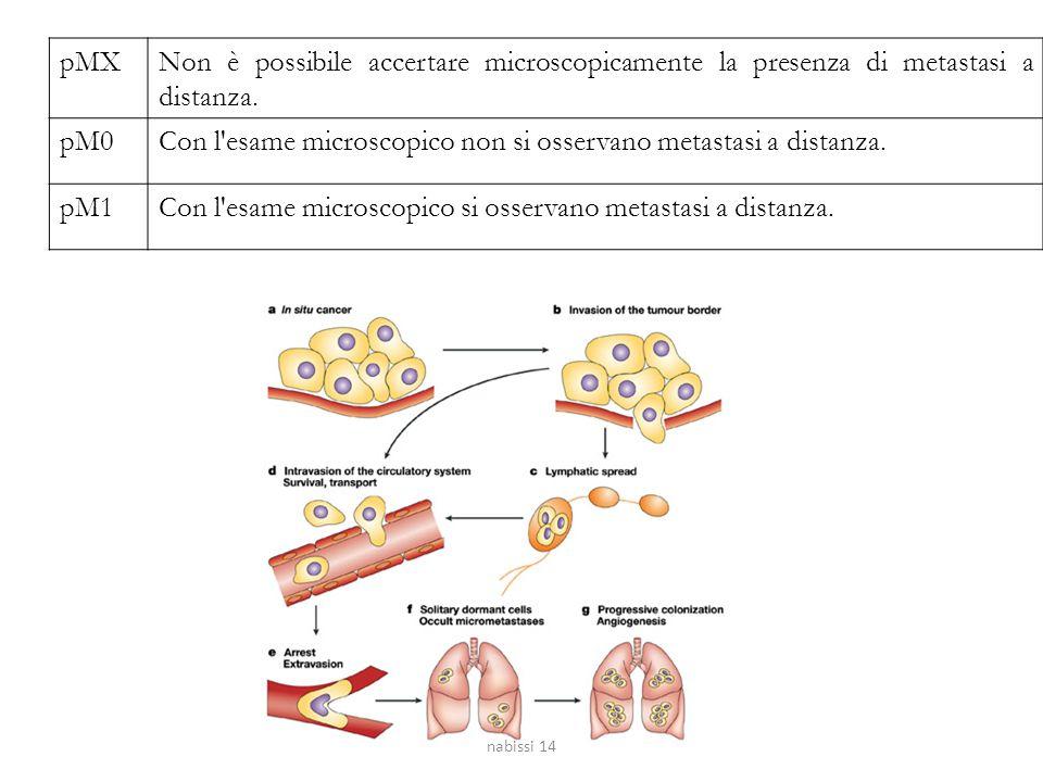 pMXNon è possibile accertare microscopicamente la presenza di metastasi a distanza. pM0Con l'esame microscopico non si osservano metastasi a distanza.