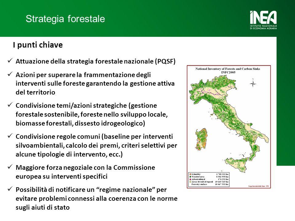 Strategia forestale I punti chiave Attuazione della strategia forestale nazionale (PQSF) Azioni per superare la frammentazione degli interventi sulle foreste garantendo la gestione attiva del territorio Condivisione temi/azioni strategiche (gestione forestale sostenibile, foreste nello sviluppo locale, biomasse forestali, dissesto idrogeologico) Condivisione regole comuni (baseline per interventi silvoambientali, calcolo dei premi, criteri selettivi per alcune tipologie di intervento, ecc.) Maggiore forza negoziale con la Commissione europea su interventi specifici Possibilità di notificare un regime nazionale per evitare problemi connessi alla coerenza con le norme sugli aiuti di stato