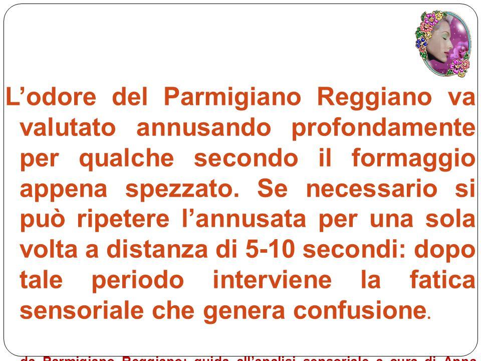 L'odore del Parmigiano Reggiano va valutato annusando profondamente per qualche secondo il formaggio appena spezzato. Se necessario si può ripetere l'