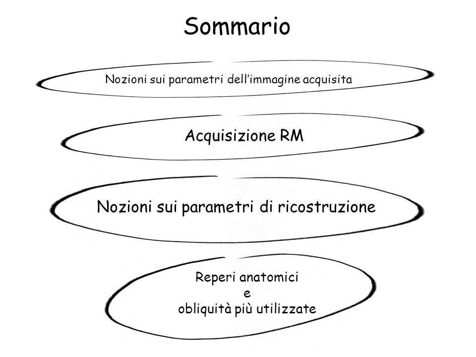 Nozioni sui parametri dell'immagine acquisita Nozioni sui parametri di ricostruzione Acquisizione RM Reperi anatomici e obliquità più utilizzate Somma