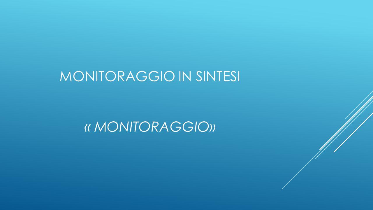 MONITORAGGIO IN SINTESI « MONITORAGGIO»