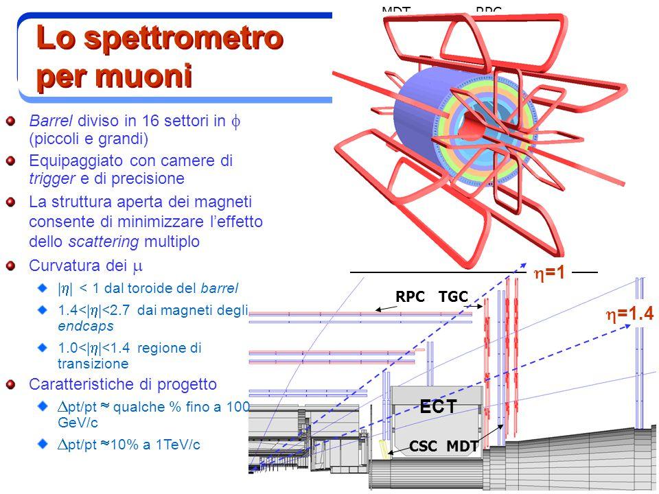 M. Biglietti MDT CSC MDT RPC TGC Lo spettrometro per muoni Barrel diviso in 16 settori in  (piccoli e grandi) Equipaggiato con camere di trigger e di