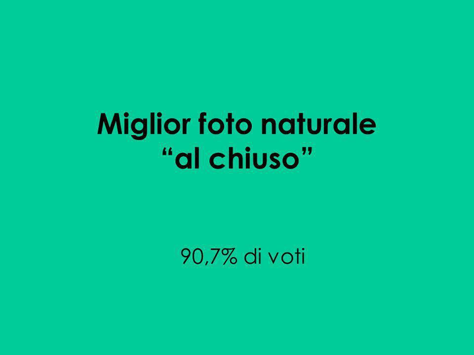 Miglior foto naturale al chiuso 90,7% di voti