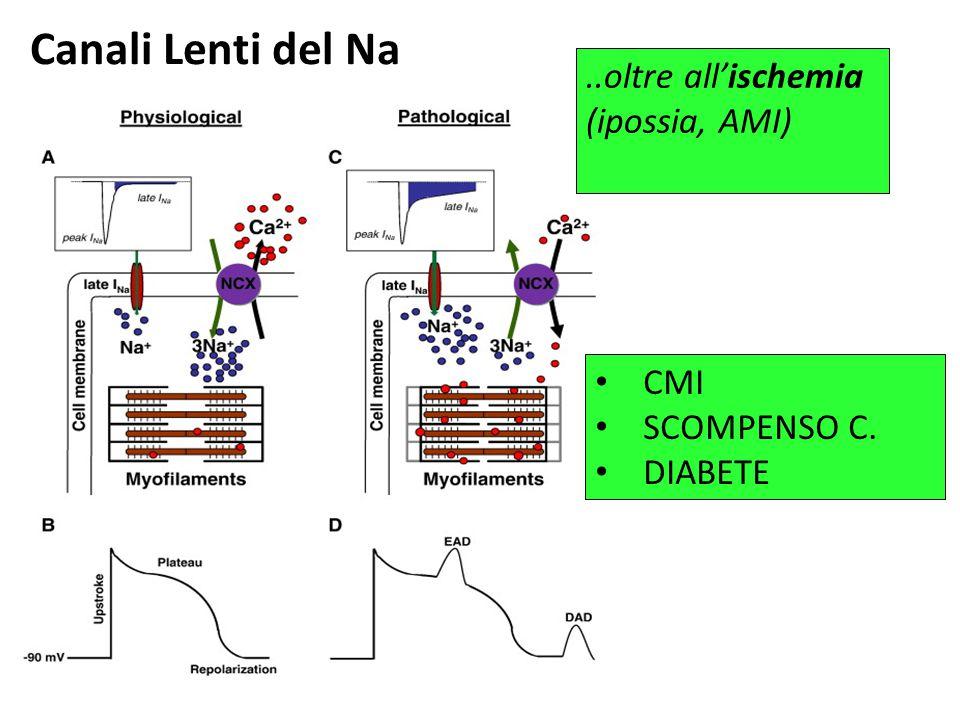 Canali Lenti del Na CMI SCOMPENSO C. DIABETE..oltre all'ischemia (ipossia, AMI)