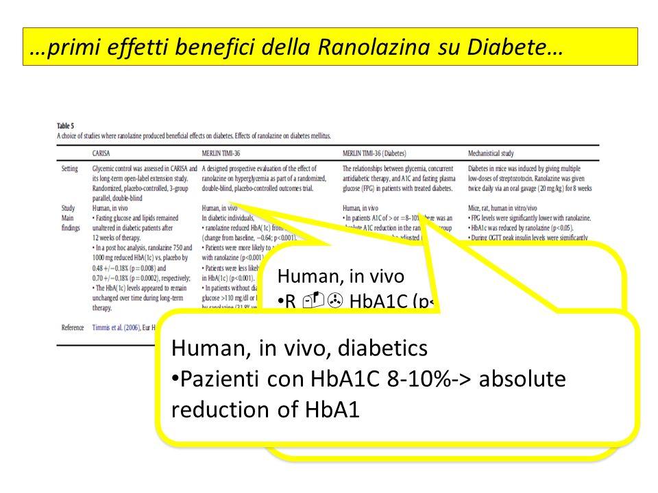 Human, in vivo R  HbA1C (p< 0.001) Pazienti con R. raggiungevano più facilmente HbA1C <7% Pazienti con R. incremento >=1% l'HbA1C era ridotto (p< 0,