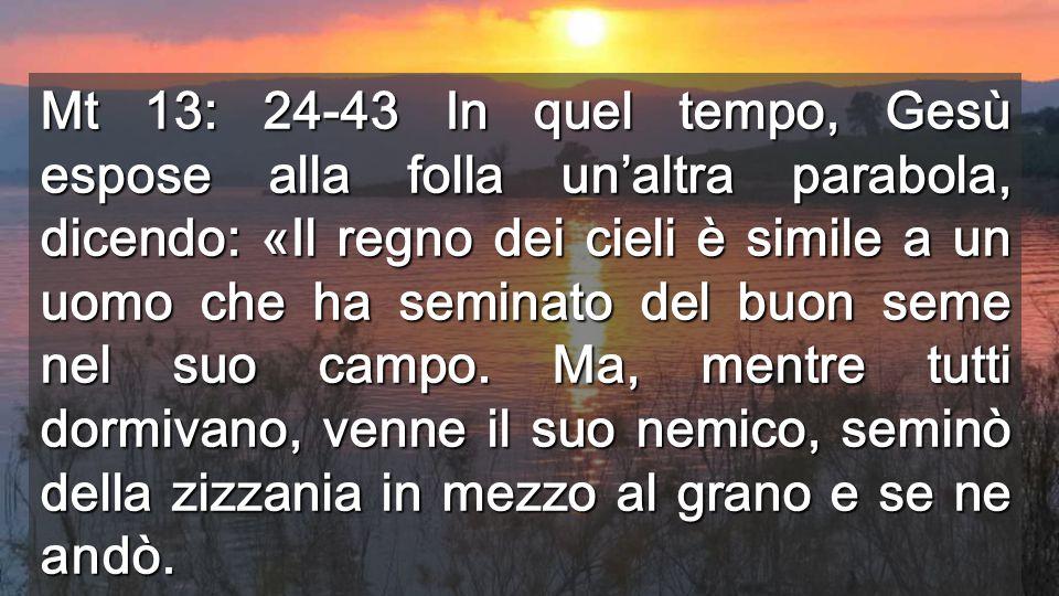 Mt 13: 24-43 In quel tempo, Gesù espose alla folla un'altra parabola, dicendo: «Il regno dei cieli è simile a un uomo che ha seminato del buon seme nel suo campo.