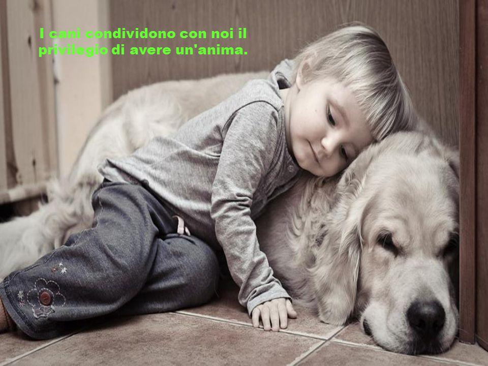 La compassione per gli animali è la più nobile virtù della natura umana.