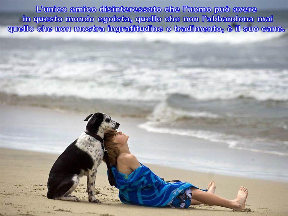 I cani condividono con noi il privilegio di avere un anima.