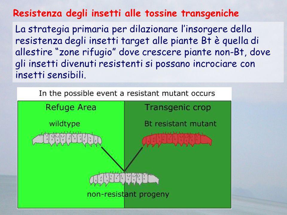 La strategia primaria per dilazionare l'insorgere della resistenza degli insetti target alle piante Bt è quella di allestire zone rifugio dove crescere piante non-Bt, dove gli insetti divenuti resistenti si possano incrociare con insetti sensibili.