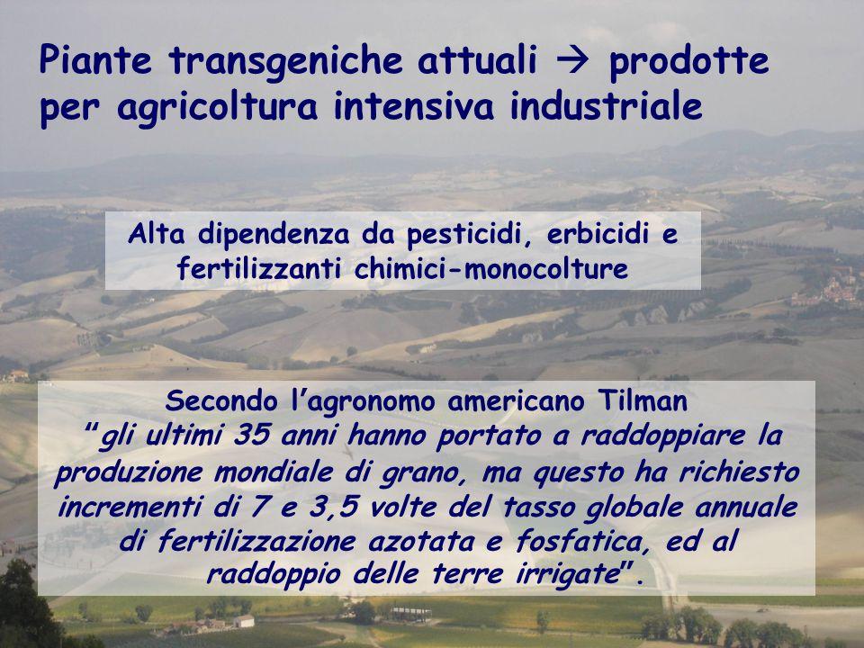Secondo l'agronomo americano Tilman gli ultimi 35 anni hanno portato a raddoppiare la produzione mondiale di grano, ma questo ha richiesto incrementi di 7 e 3,5 volte del tasso globale annuale di fertilizzazione azotata e fosfatica, ed al raddoppio delle terre irrigate .