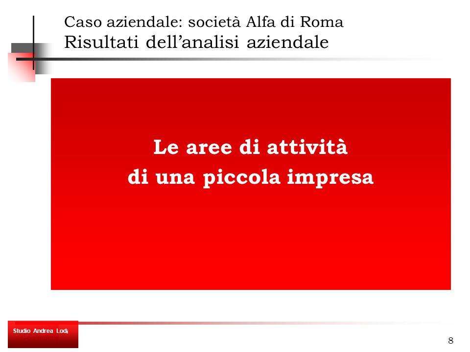 8 Le aree di attività di una piccola impresa Caso aziendale: società Alfa di Roma Risultati dell'analisi aziendale Studio Andrea Lod i