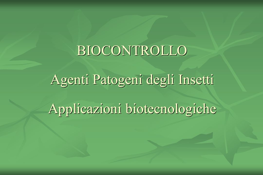 Alcuni dei Funghi entomopatogeni isolati in Italia Alcuni dei Funghi entomopatogeni isolati in Italia Beauveria bassiana B.
