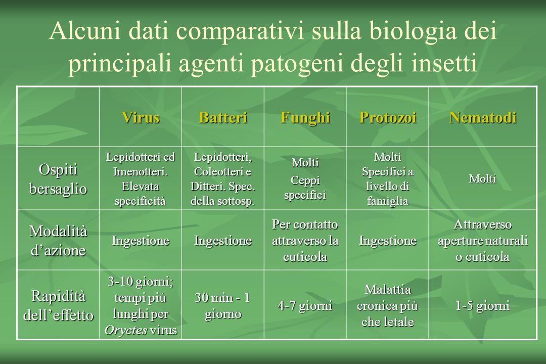 Alcuni dati comparativi sulla biologia dei principali agenti patogeni degli insetti VirusBatteriFunghiProtozoiNematodi Ospiti bersaglio Lepidotteri ed Imenotteri.