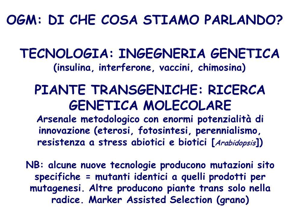 PIANTE TRANSGENICHE: RICERCA GENETICA MOLECOLARE Arsenale metodologico con enormi potenzialità di innovazione (eterosi, fotosintesi, perennialismo, re