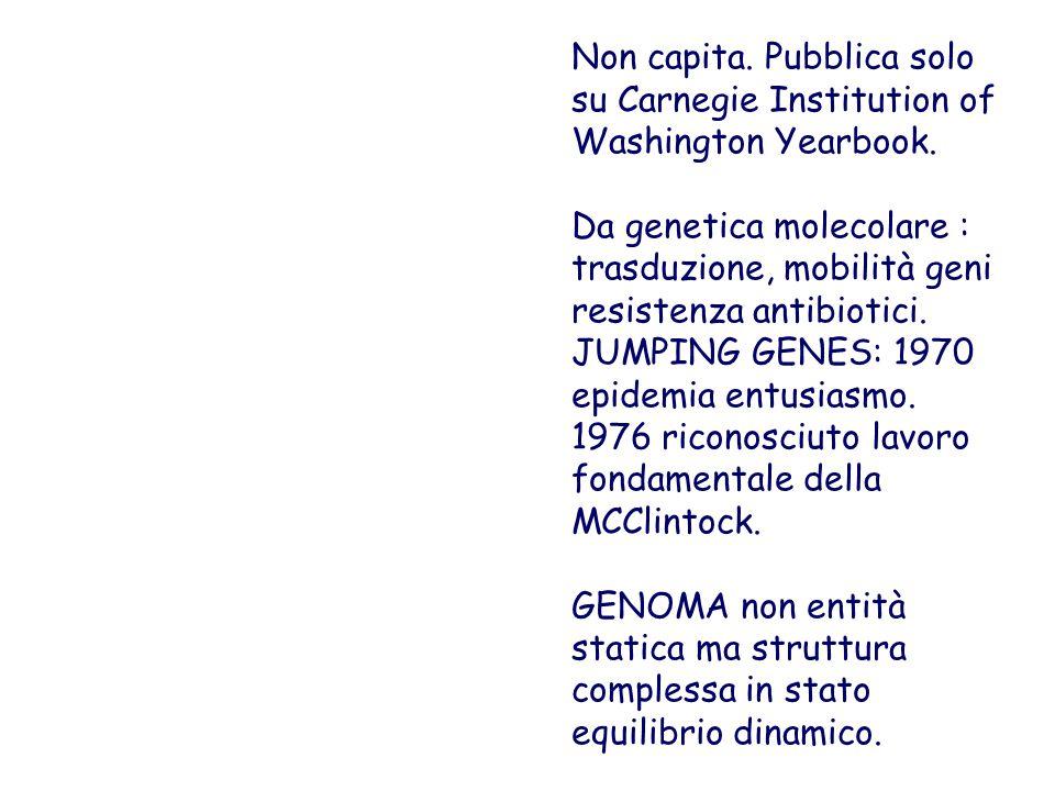 Non capita. Pubblica solo su Carnegie Institution of Washington Yearbook. Da genetica molecolare : trasduzione, mobilità geni resistenza antibiotici.