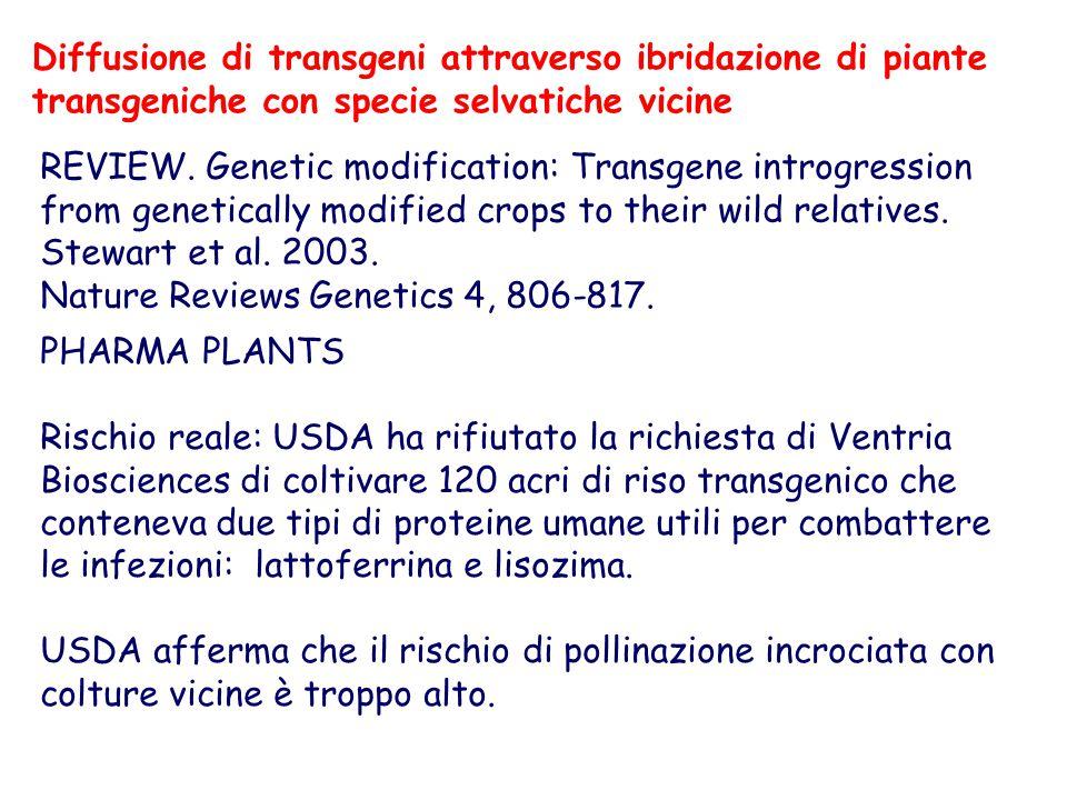 PHARMA PLANTS Rischio reale: USDA ha rifiutato la richiesta di Ventria Biosciences di coltivare 120 acri di riso transgenico che conteneva due tipi di proteine umane utili per combattere le infezioni: lattoferrina e lisozima.