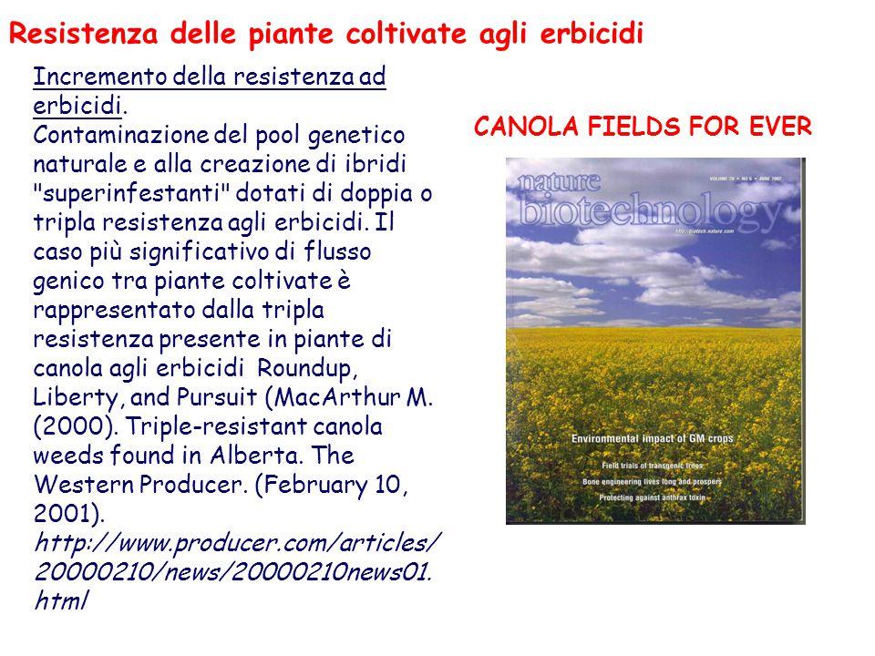 Incremento della resistenza ad erbicidi. Contaminazione del pool genetico naturale e alla creazione di ibridi