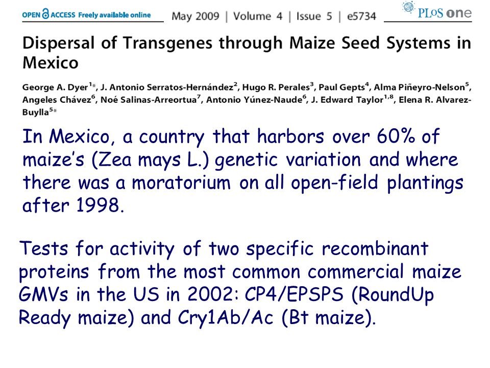 In Mexico, a country that harbors over 60% of maize's (Zea mays L.) genetic variation and where there was a moratorium on all open-field plantings after 1998.