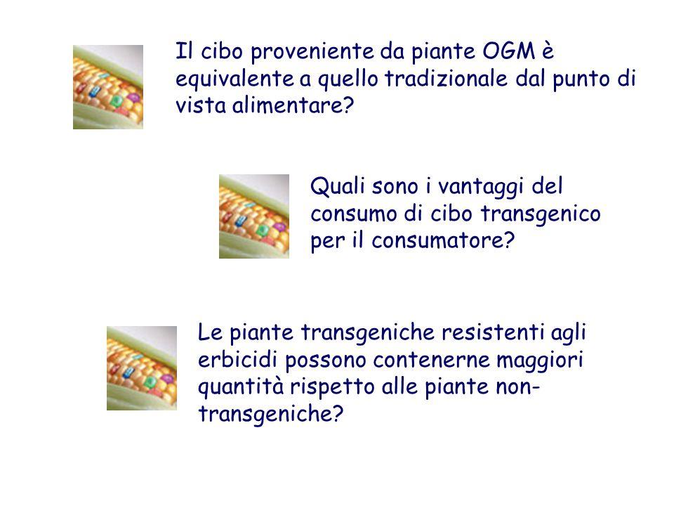 Il cibo proveniente da piante OGM è equivalente a quello tradizionale dal punto di vista alimentare? Quali sono i vantaggi del consumo di cibo transge