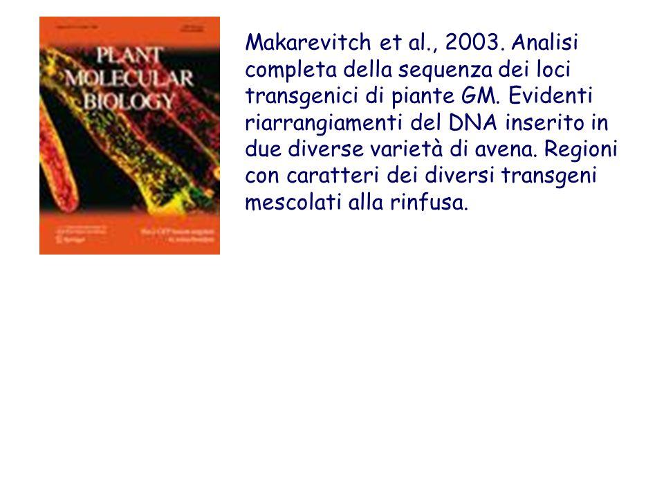 Makarevitch et al., 2003. Analisi completa della sequenza dei loci transgenici di piante GM. Evidenti riarrangiamenti del DNA inserito in due diverse