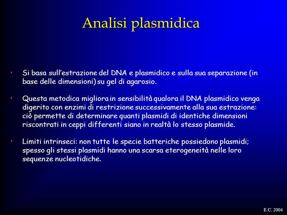 Analisi plasmidica Si basa sull'estrazione del DNA e plasmidico e sulla sua separazione (in base delle dimensioni) su gel di agarosio. Questa metodica