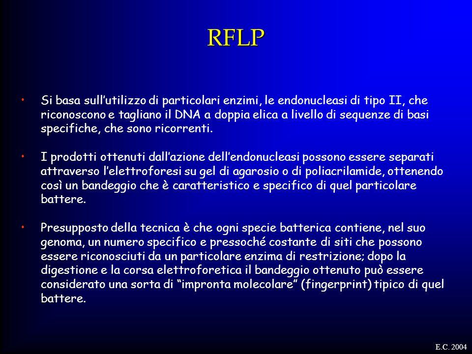 RFLP Si basa sull'utilizzo di particolari enzimi, le endonucleasi di tipo II, che riconoscono e tagliano il DNA a doppia elica a livello di sequenze d