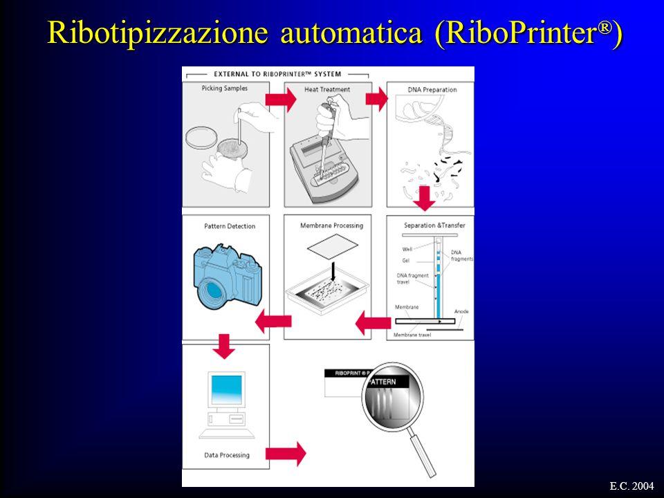 Ribotipizzazione automatica (RiboPrinter ® ) E.C. 2004