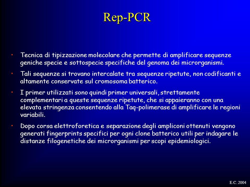 Rep-PCR Tecnica di tipizzazione molecolare che permette di amplificare sequenze geniche specie e sottospecie specifiche del genoma dei microrganismi.
